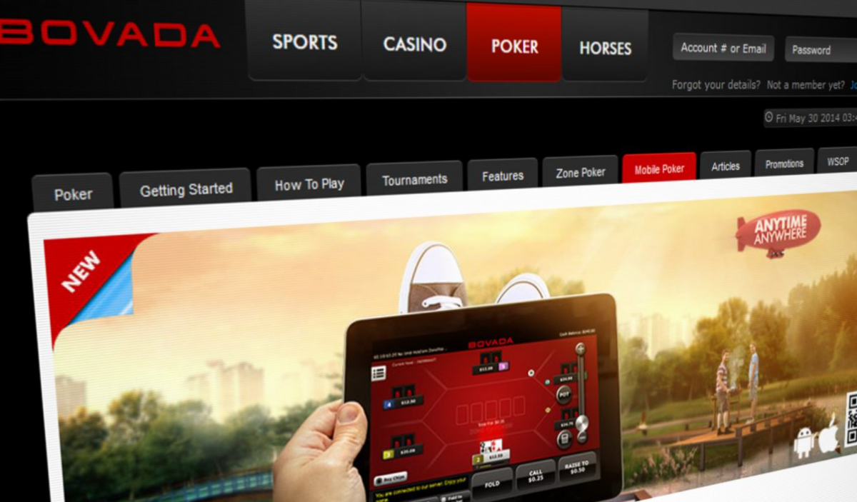 What is Bovada